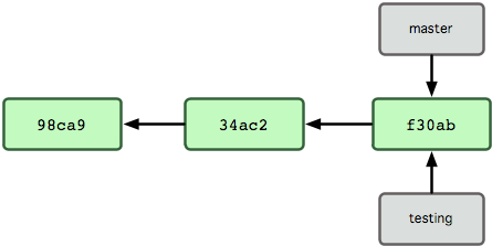 Figure 3-4. Multiple branches pointing into the commit's data history.