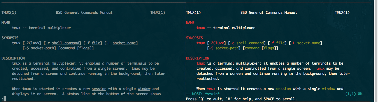 Read The Tao of tmux | Leanpub