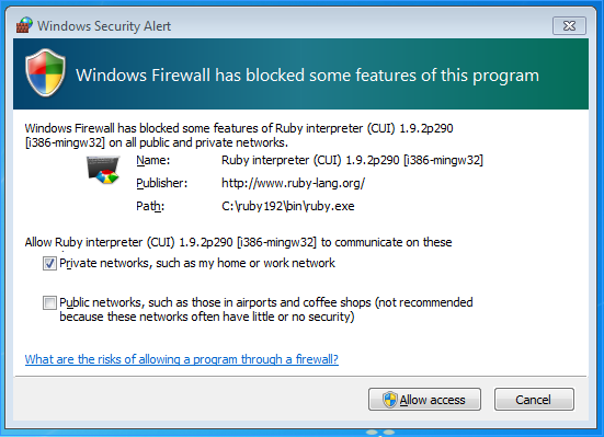 Windows Firewall has blocked some features of this program